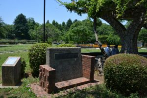 里見公園の国府台城跡の碑